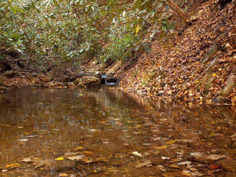 Autumn Creek arkivfoto