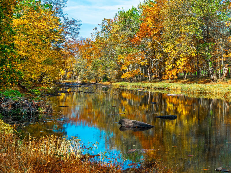 Autumn Creek Reflections. Colorful Autumn reflections on Tohickon Creek in Bucks County Pennsylvania stock images