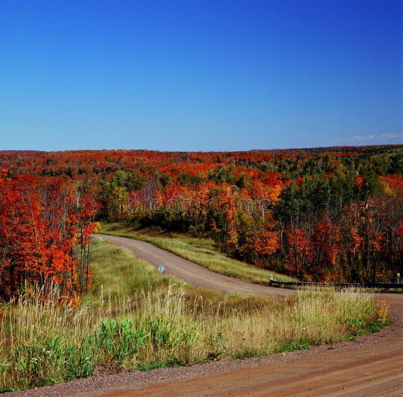 Autumn Crossroads - floresta nacional superior fotografia de stock royalty free