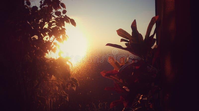 Autumn dawn royalty free stock photos