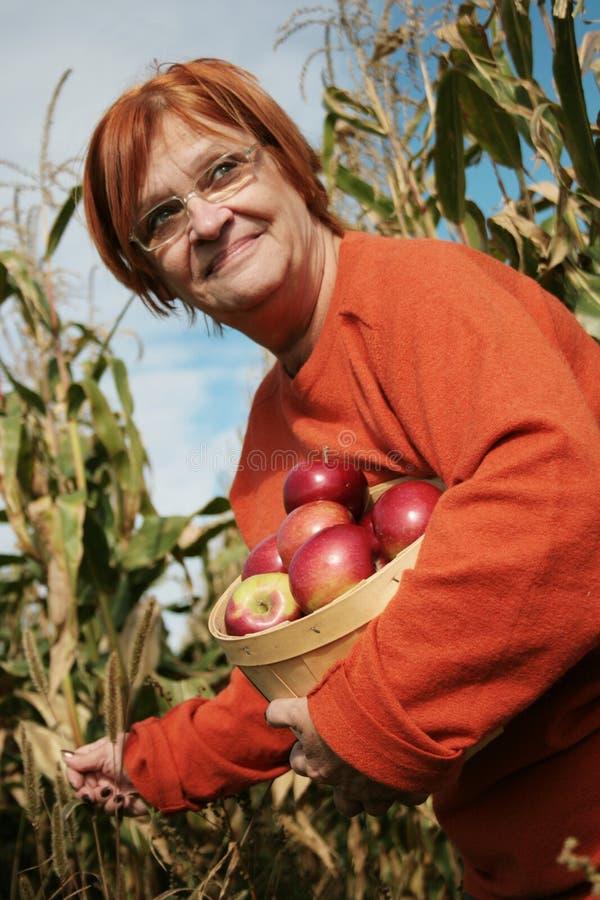Free Autumn Day Stock Image - 3288461