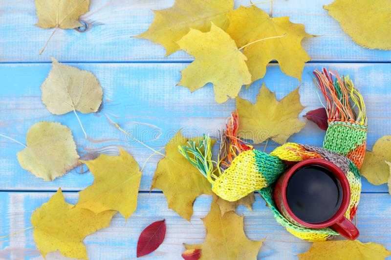 Autumn days with a warming drink. Red cup with black coffee in scarf on blue table covered with yellow leaves top view royalty free stock image