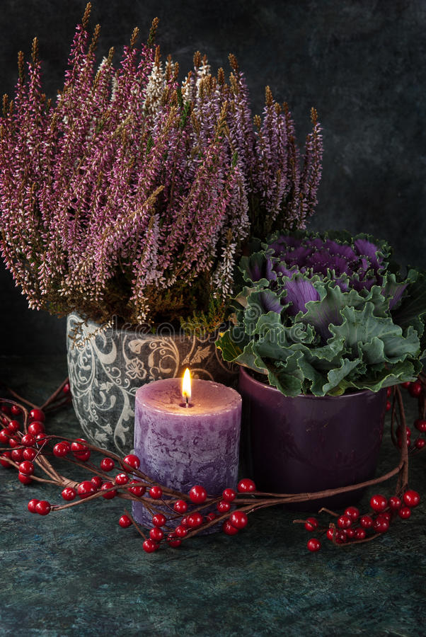 Download Autumn Decor With A Heather Stock Photo - Image: 98895006
