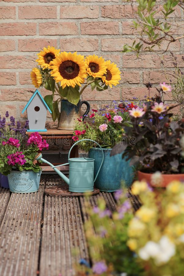 Autumn decor with sunflowers. Beautiful flowers in pot near brick wall outside, Autumn decor with sunflowers stock photos