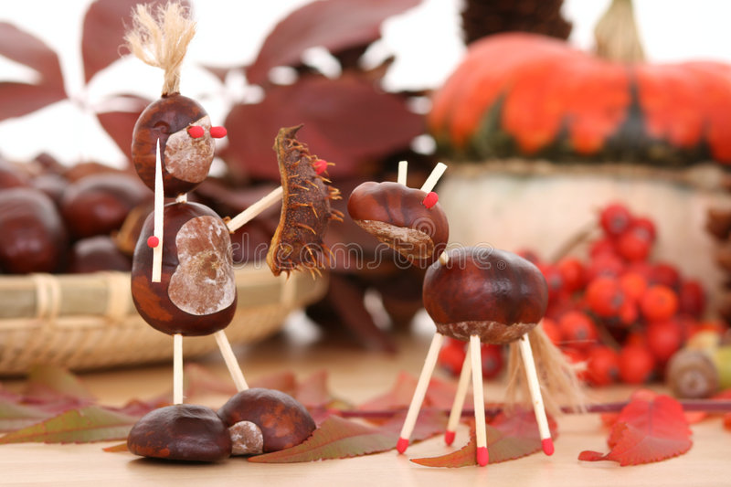 Autumn decoration stock image
