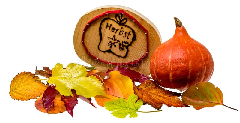 Autumn decoration with colorful foliage and Hokkaido pumpkin and a wooden plate with German inscription `Autumn`. Isolated on white stock photos