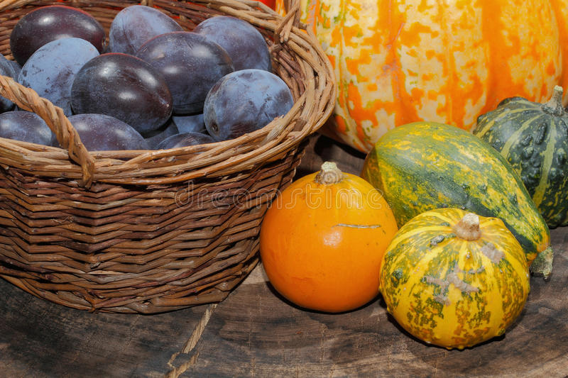 Autumn decoration, pumpkin, gourd, plums royalty free stock photography