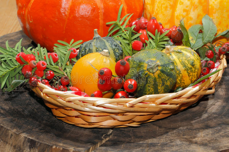 Autumn decoration, pumpkin, gourd, rose hips, berries. Of mountain ash and yew in a basket royalty free stock images