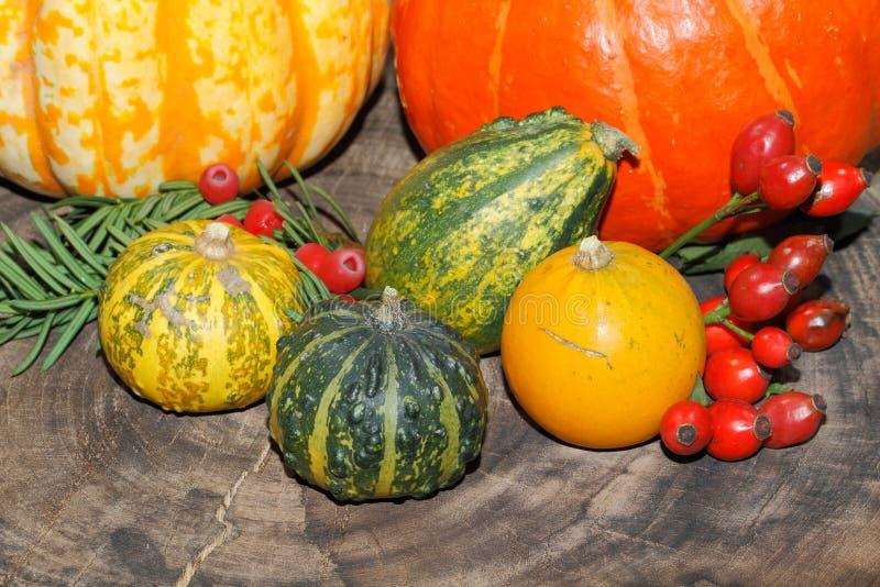 Autumn decoration, pumpkin, gourd, rose hips, berries stock photo