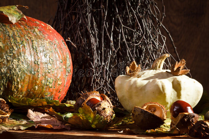 Autumn decoration in vintage basement royalty free stock photography