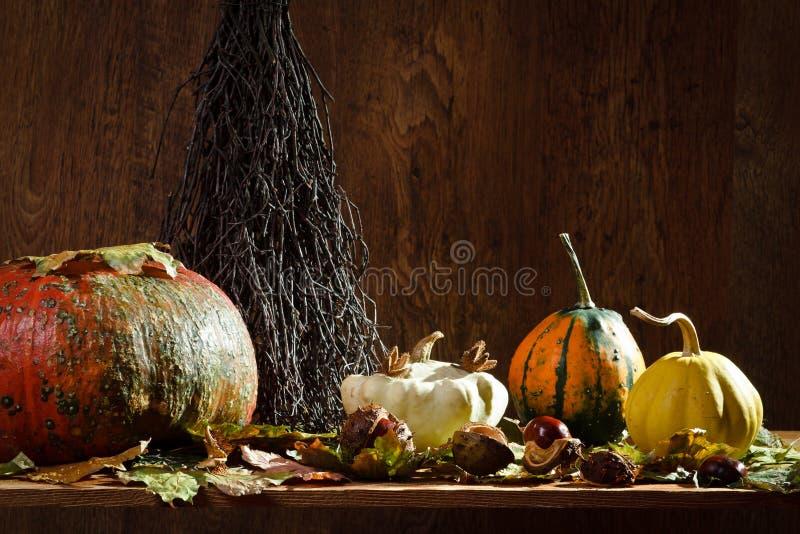 Autumn decoration in vintage cellar stock photo