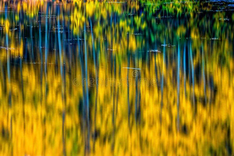 Autumn Deep immagine stock libera da diritti
