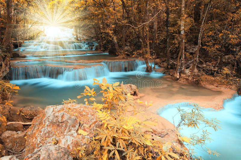 Autumn deep forest waterfall with light beam stock images