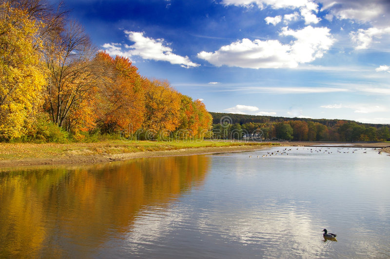 Autumn at Deer Lake. Even with lower levels in the dam, Deer Lake is a pleasant place to enjoy spending time at stock photo