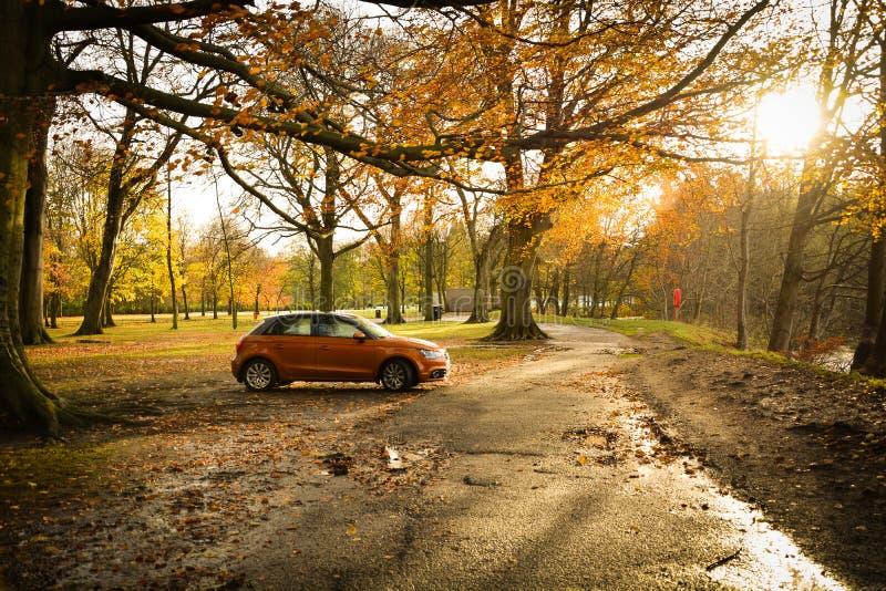 Autumn Delight image libre de droits