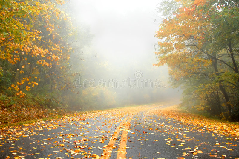 Autumn on Deserted Roadway royalty free stock photography