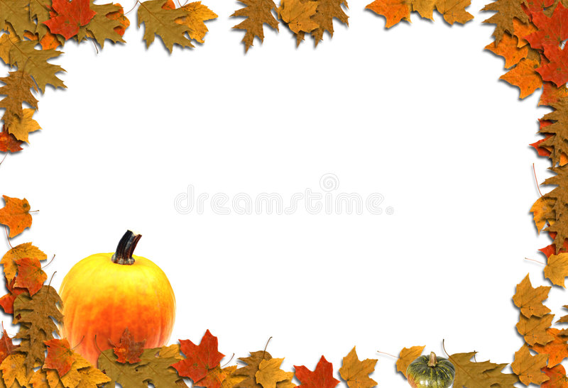 Autumn Design. Colorful fall leaves and pumpkins on a white flat background vector illustration