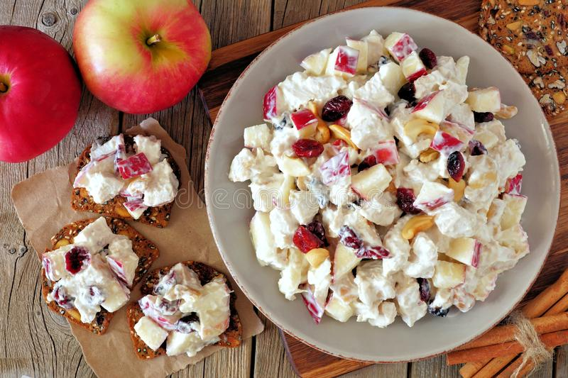 Autumn dish with chicken, apples, nuts, cranberries, on crackers. Autumn dish with chicken, apples, nuts and cranberries, on crackers overhead scene on rustic royalty free stock image