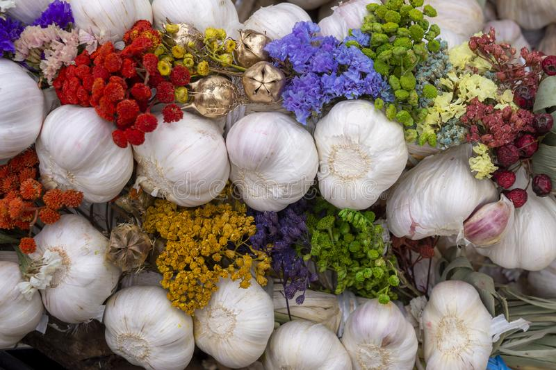 Autumn display with fresh garlic bulbs and flowers royalty free stock images