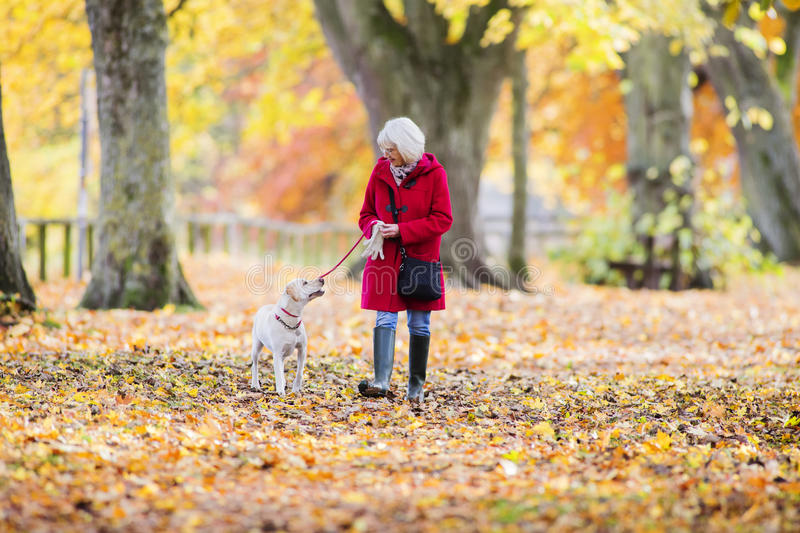 Autumn Dog Walk. Senior woman is enjoying an autumn walk with her pet dog stock images