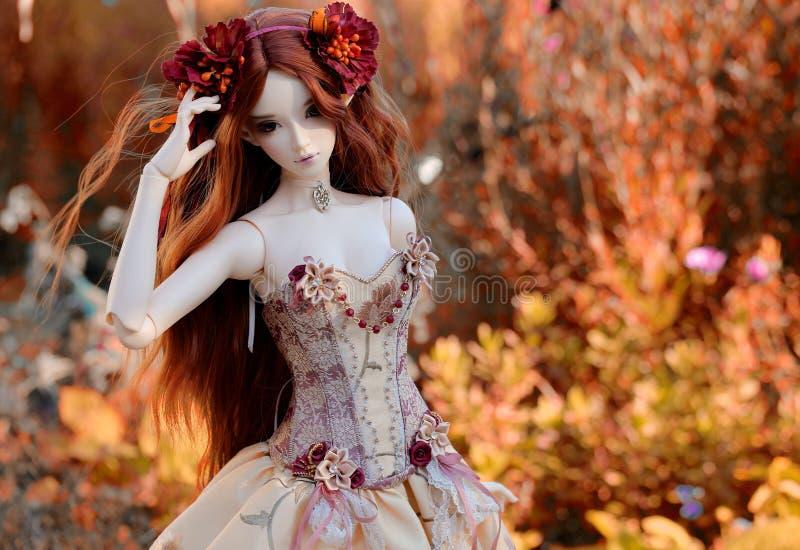 Autumn, Doll, Leaf, Girl royalty free stock photos