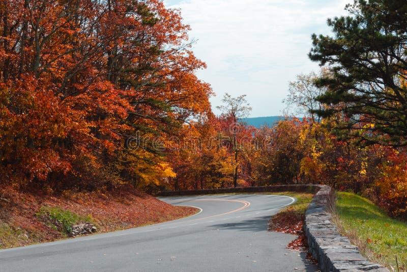 Autumn Drive stock afbeeldingen