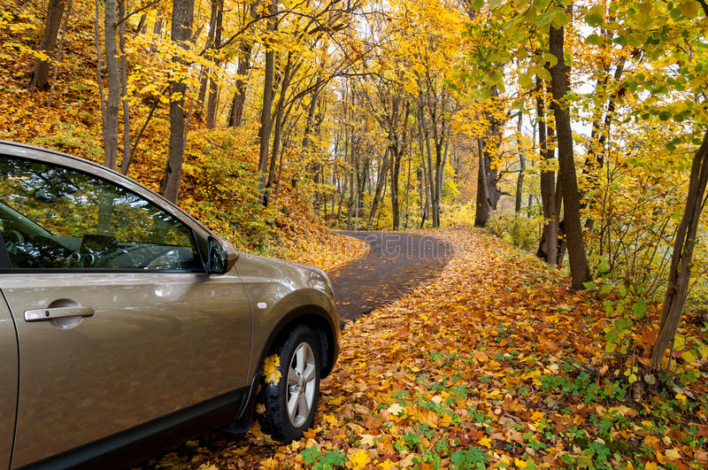 Autumn driving. Car driving on a winding road in forest on autumn day stock images