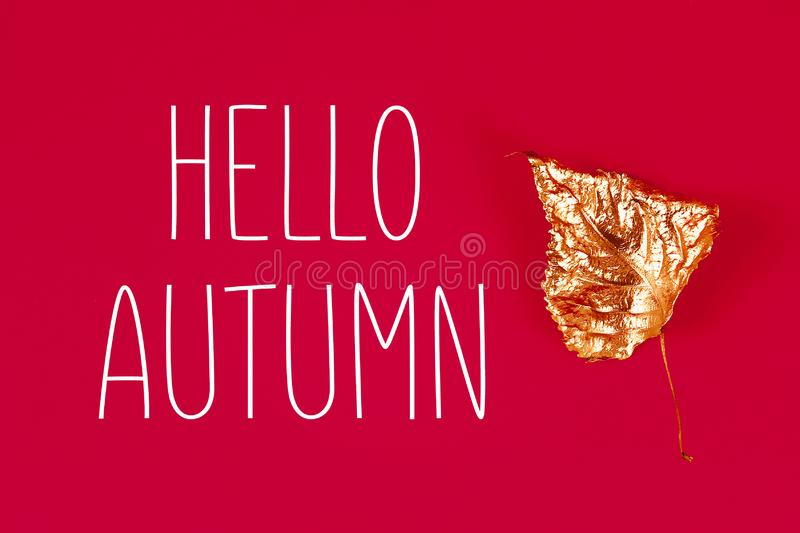 Autumn dry leaves painted with gold paint on red background. Top view. Trendy. Golden autumn stock image