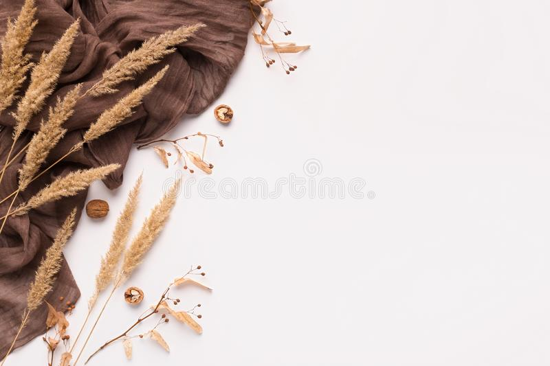 Autumn dry spicas and brown scarf on white stock image