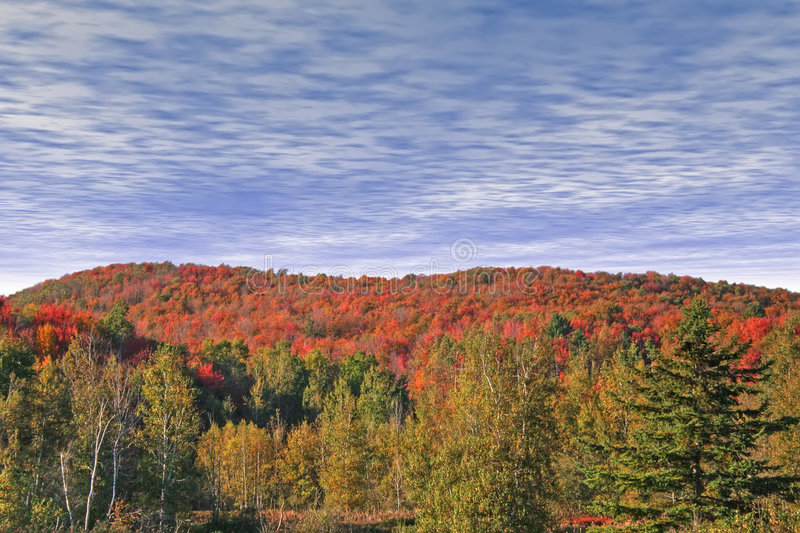 Download Autumn At Eastman. Stock Photography - Image: 4981882