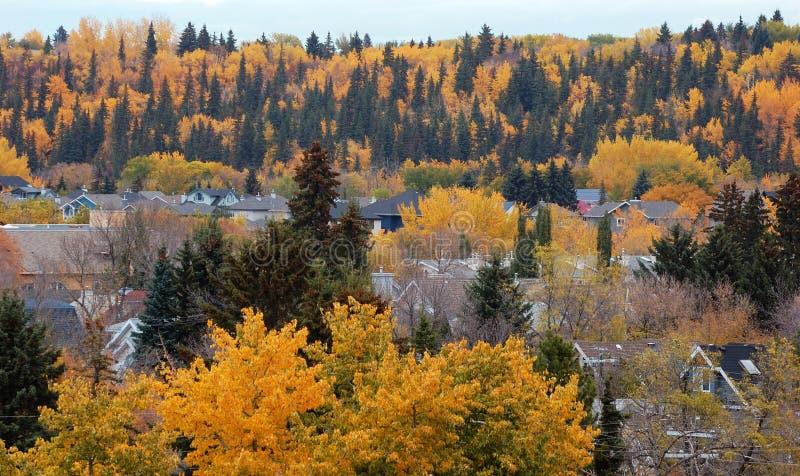 Autumn edmonton stock photo