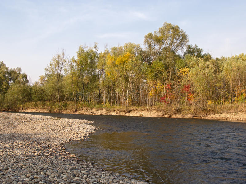 Autumn evening at the river royalty free stock images