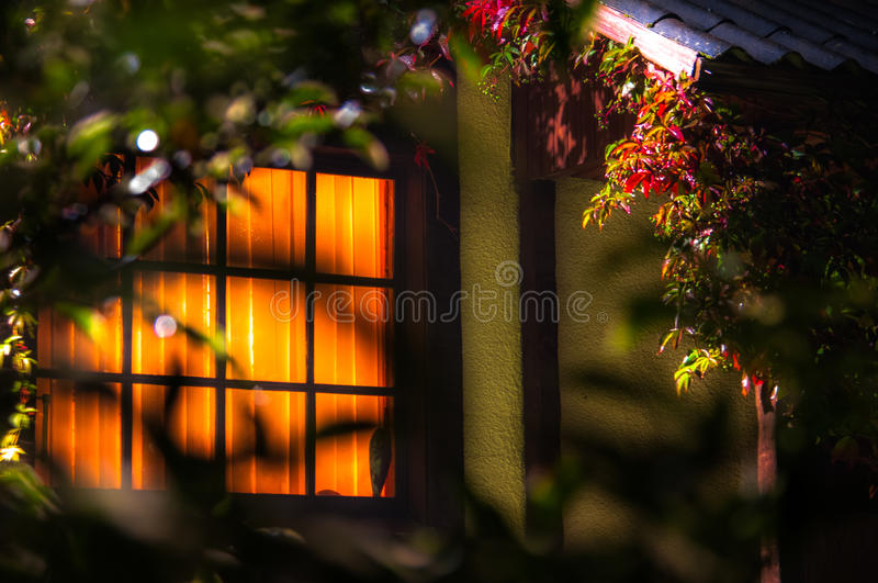 The autumn evening. September evening outside of town.Window smackin light .A fragment of the wooden porch.Grape leaves royalty free stock photos