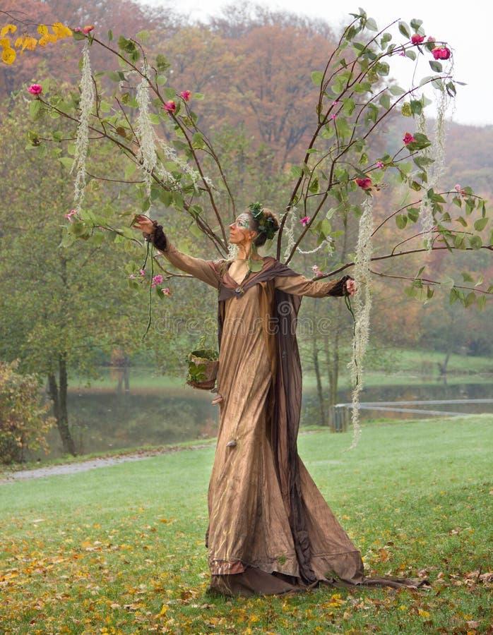 Autumn fairy stock images