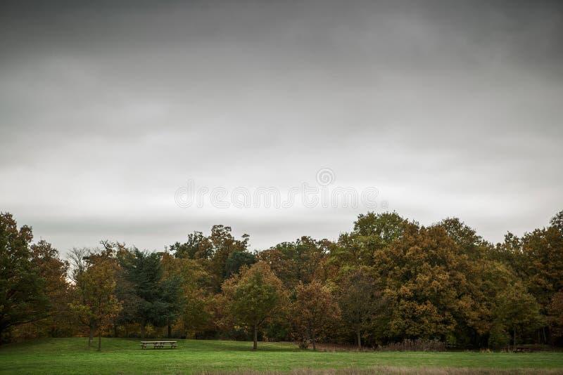 Autumn Fal stock afbeelding