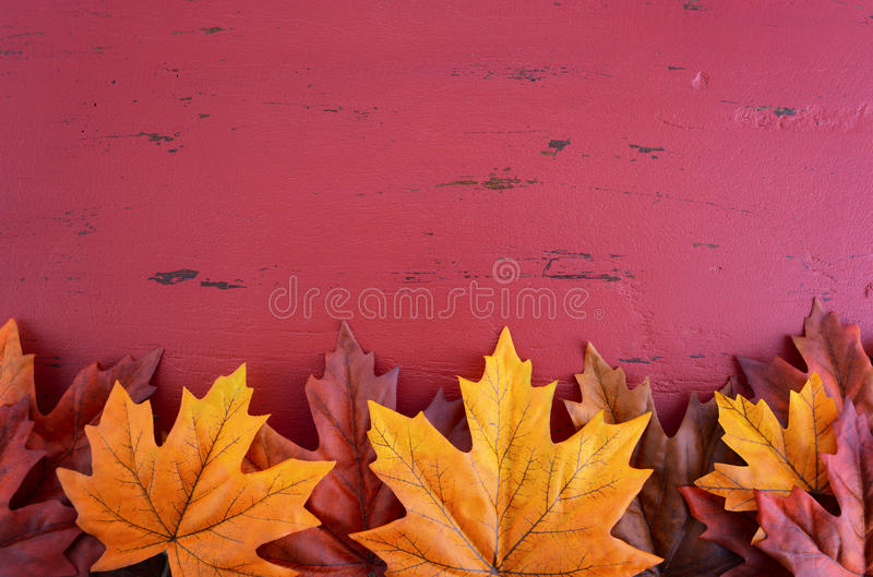 Autumn Fall Background royalty-vrije stock afbeeldingen