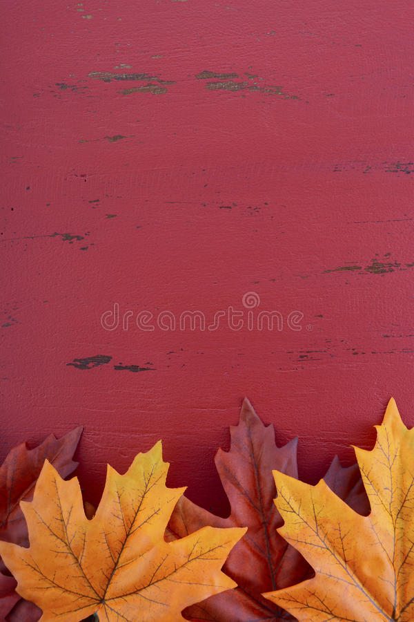 Autumn Fall Background stock foto's