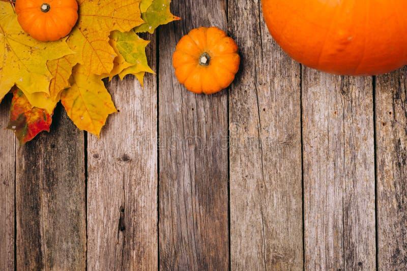 Autumn Fall Background Hojas, calabazas en el escritorio del tablero de madera del vintage, visión superior Copie el espacio Espa imagenes de archivo