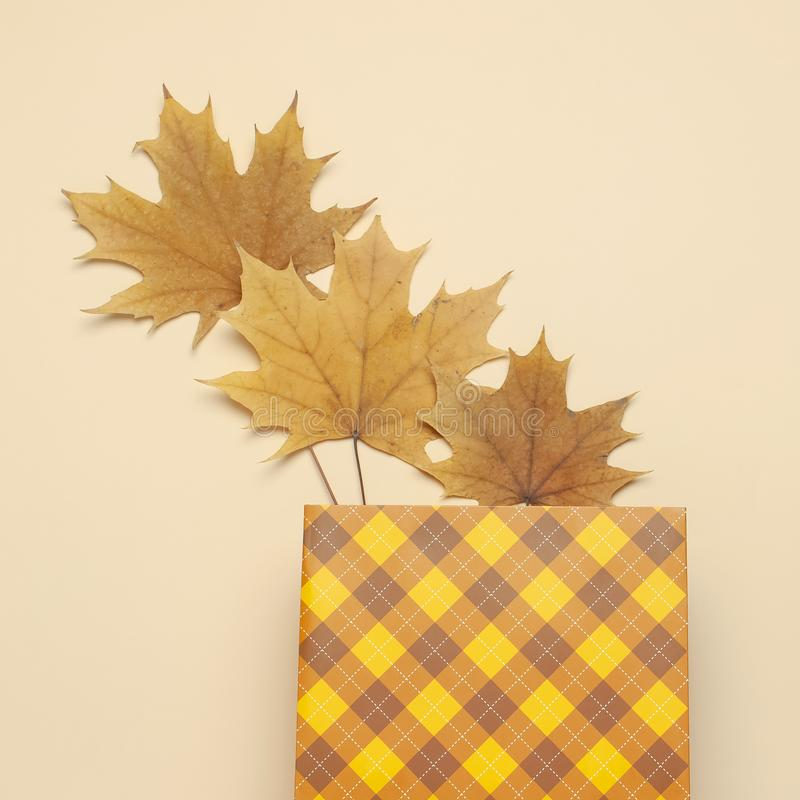 Autumn, fall concept. Checked orange gift paper bag and autumn dried leaves on pastel beige background. Flat lay, top view, copy stock images