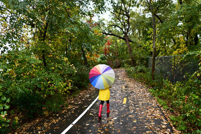 Autumn / fall concept - woman walking in forest. With umbrella in rain. Girl enjoying rainy fall day royalty free stock photography