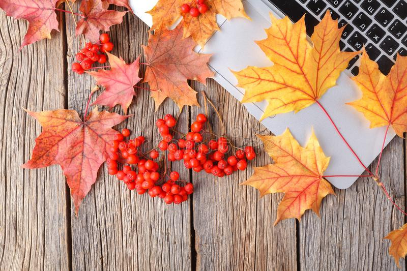 Autumn fall flat lay, top view home office table desktop royalty free stock photography