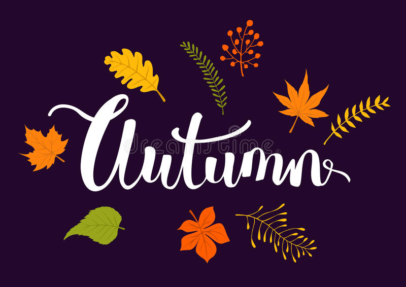 Autumn fall leaves branches background. Texture vector illustration