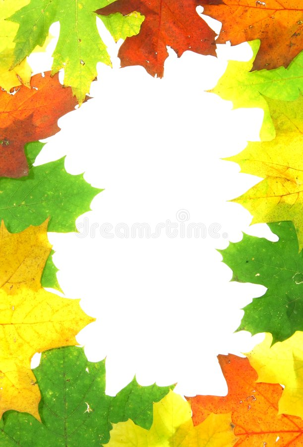 Download Autumn fall leaves - frame stock photo. Image of foliage - 3459020