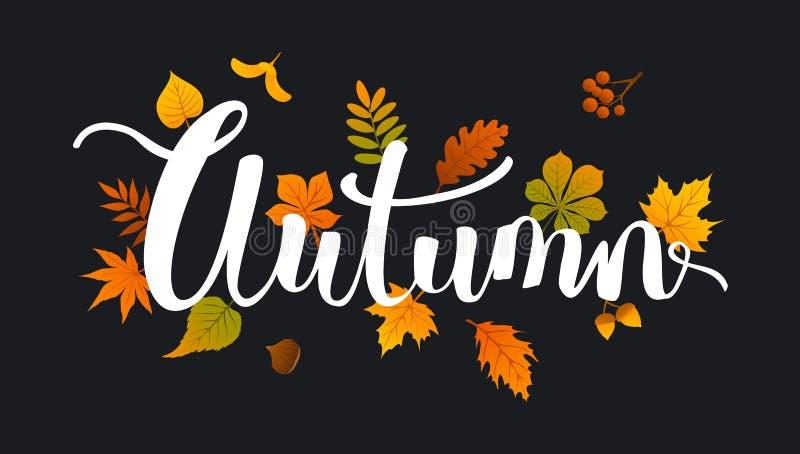 Autumn fall leaves handwriitten background. On black backdrop royalty free illustration