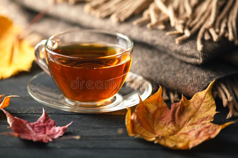 Autumn, fall leaves, hot cup of coffee and a warm scarf on wooden table background. Seasonal, morning coffee, sunday relax and st stock image