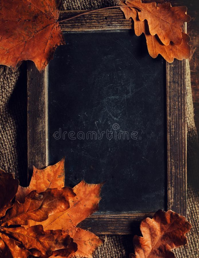 Autumn, fall leaves on vintage Empty blank black chalkboard with copyspace. Cozy Autumn Still Life Background stock image