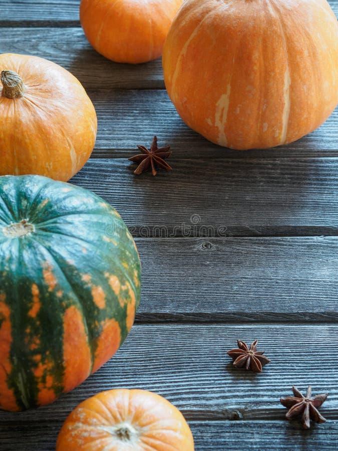 Autumn Fall Pumpkin Thanksgiving Background - abóboras alaranjadas sobre a tabela de madeira imagem de stock