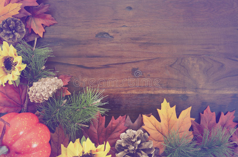 Autumn Fall Rustic Wood Background royalty-vrije stock foto's