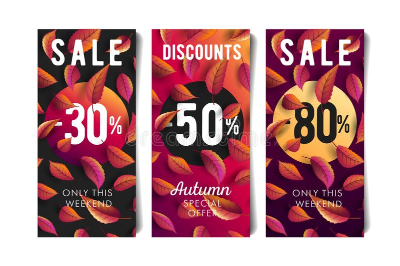 Autumn fall sale flyers set with percentage discounts and coloured leaves. Autumn fall sale flyers set in three options with percentage discounts and coloured royalty free illustration