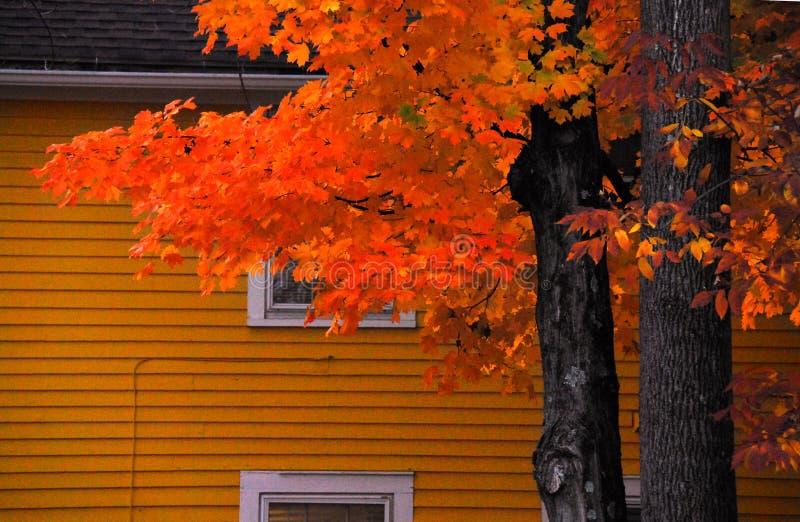 AUTUMN-FALL-, zu Hause in den Fall-Farben stockfoto